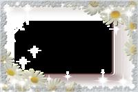 Molduras floridas (3).png