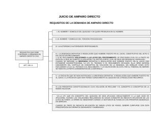 JUICIO DE AMPARO DIRECTO.doc