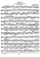 ALLEGRO FOR VIOLA(1 PG).PDF
