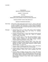 UN2009-SMA.pdf