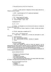 OrganizJusta.pdf