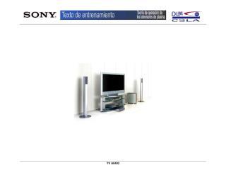 14480467-Sony-Training-Tv-Plasma.pdf